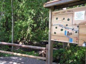 Mill Creek Nature Trails