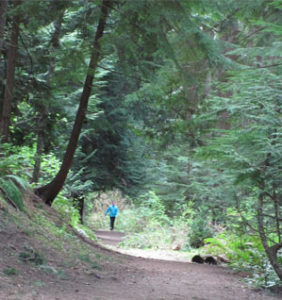 Lynnwood Lakes and Trails